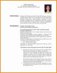 Professional Summary Resume Sample Unique Resume Career Summary