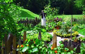 Small Picture backyard vegetable garden design ideas Bills Garden
