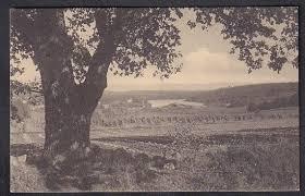 Ramberg, Jeløen pr. Moss. Rolf Olsen (Annonse nr: 2082358 - GiBud.no)