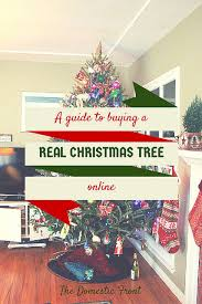 When Should You Buy A Christmas Tree