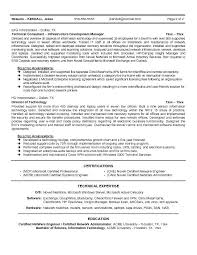Cio Resume Samples The Resume Collection