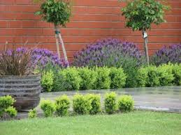 Small Picture LavenderGardenIdeas Gardening Made Easy Providing Garden