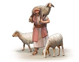 Image result for picture of sheep with shepherd