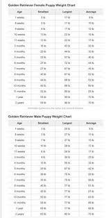 English Golden Retriever Weight Chart Golden Retriever Weight Online Charts Collection
