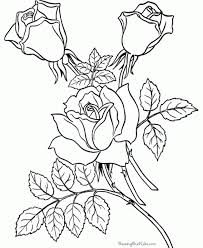 Free Printable Flower Coloring Pages Adult Get Coloring Pages