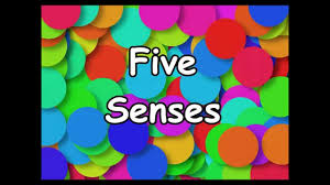 the five senses song silly school songs the five senses song silly school songs