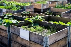 25 Diy Raised Garden Beds Corrugated Metal Wood Galvanized
