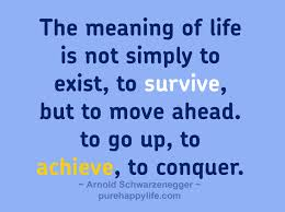 Life Quotes The Meaning Of Life Is Not Simply To Exist To Survive Delectable What Is The Meaning Of Life Quotes