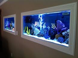 An actual fish tank as a wall Aquariums Saltwater Fish Tanks | Decor |  Pinterest | Saltwater fish tanks, Wall aquarium and Fish tanks