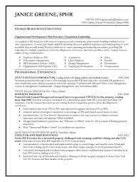 Executive Resume Writing Service Resume Cover Letter Template
