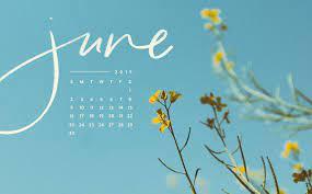 June 2019 Desktop Calendar - 2560x1595 ...