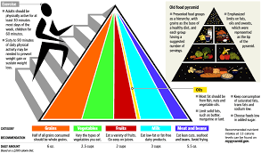 a healthy example our introduction to the new food pyramid a healthy example our introduction to the new food pyramid cleverly changing