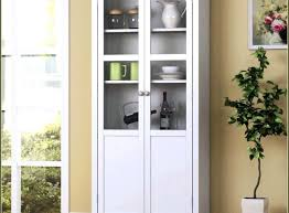 kitchen storage cabinets with doors. Contemporary Kitchen Kitchen Storage Pantry Cabinet Astonishing  Ikeawhitestandingcabinetstandingkitchen Image Of Inspiration And Ideas To Cabinets With Doors A