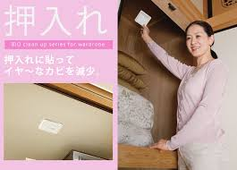 just stick a always clean clothes and bedding mold protect from the smell