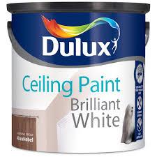 white ceiling paintDulux Ceiling Paint Matt Brilliant White  25 Litre  White