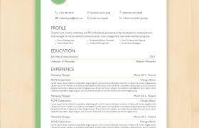 Profesional Resume Format Food Server Resume Sample Manager