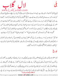 cat essay in urdu billi cat essay in hindi billi par nibandh  2nd essay on cat in urdu