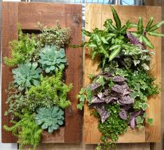Living  Living Wall Planters Superb Diy Living Wall Indoor  View - Homemade decoration ideas for living room 2