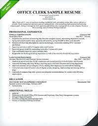 Government Resume Writers Professional Resume Writers Federal Resume Custom Professional Resume Writers Near Me