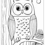 Brillante Immagini Di Animali Da Disegnare Facili Boccette