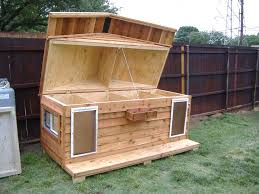 modest design plans for building a dog house insulated dog house for two custom large heated