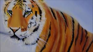 how to paint a tiger with acrylic paint easy step by step instructions fun and easy