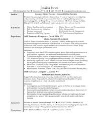 Claims Adjuster Resume Template Sample Claim Adjuster Resume Www Omoalata Com Auto Insurance Claims 4
