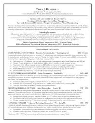 Example Resume Formats Beauteous Executive Summary Resume Format Good Example For Internship
