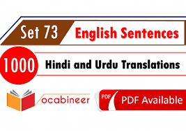 hindi sentences with english meaning