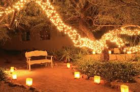 How to Use Fairy Lights to Decorate Your Garden