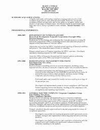Auditor Resume Sample 24 Best Of Staff Auditor Resume Sample Resume Sample Template And 22