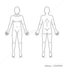 人体図のイラスト素材 Pixta
