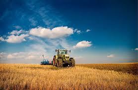 Основные тенденции развития сельского хозяйства в мировой  Основные тенденции развития сельского хозяйства в мировой экономике