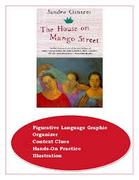 the house on mango street essay topics