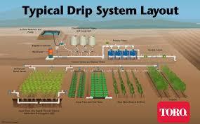 Underground Sprinkler System Design Software Typical Drip Irrigation Layout Driptips By Toro Ag