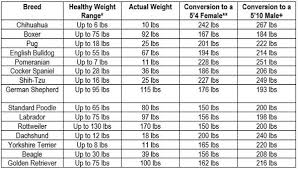 Female Weight Range Chart How To Determine If Your Dog Is Cute And Pudgy Or Overweight