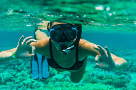 How To Choose The Best Snorkel Gear 2019 Reviews Guide
