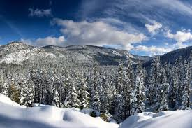Weather forecast forsouth lake tahoe, california (united states). Weather Lake Tahoe It S Snowing Here S What You Re Missing Curbed Sf
