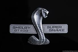 shelby mustang logo wallpaper. Simple Shelby 1920x1080 Ford Mustang For Shelby Logo Wallpaper H