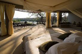 safari bedroom - Google Search
