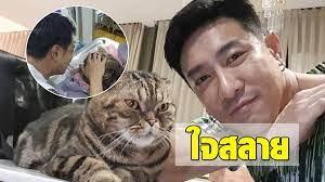 บอย พิษณุ ปล่อยโฮ! สูญเสีย พี่เสือ น้องแมวสุดที่รัก - ข่าวสด