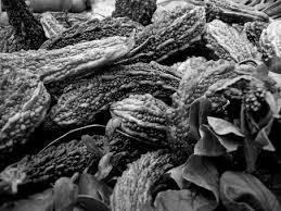 瓜 に関する写真写真素材なら写真ac無料フリーダウンロードok