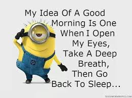 good morning funny pics