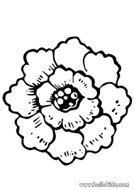 Rose Flower Coloring Pages Hellokidscom