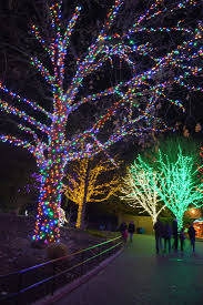 Tips For Visiting Zoolights At The National Zoo With Kids