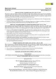 Resume Meaning Classy Sample Marketing Writer Resume Resume Examples Resume Sample