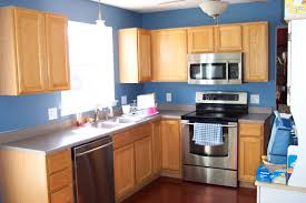 Oak Cabinet Kitchen Kitchen Paint Colors With Oak Cabinets And Stainless Steel Appliances