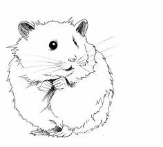 Cute Hamster Clipart Black And White Hasshecom