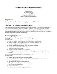 Download Objective Summary For Resume Haadyaooverbayresort Com