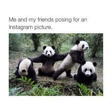 I Miss My Best Friend Quotes Amazing Best Friend Memes POPSUGAR Tech